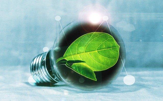 energy savings light bulb with a leaf inside